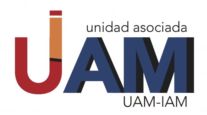 REUNIÓN UNIDAD ASOCIADA UAM-IAM